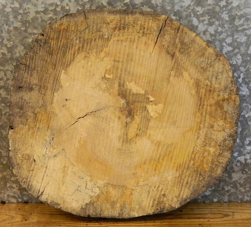 Maple Log
